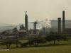 Mandini  Sappi Mill - S 29.08.786 E31.24.436 Elev 85m (8)