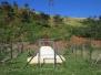 Appelbosch - Nsuza - Isenembe - Glenside