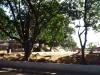 Isnembe Secondary School - R614 - 29.27.850 S 31.04.640 E (1)