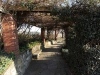 Michaelhouse -  Old tin houses and Amphitheatre (2)