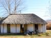 Michaelhouse -  Pavilion & fields (2)