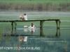 Beaconvlei - Jetty and canoe reflections (2)