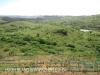 Ballito undeveloped land (1)