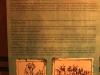 Blood River - Visitors Centre - storyboards  (7)