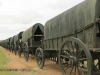 Blood River - Wagons in laager - Bronzes -  (20)