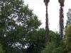baynesfield-gardens-2
