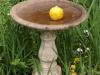baynesfield-gardens-7