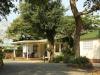 Ifafa - MacNicols Resort - Bungalows (2)