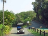 Ifafa - MacNicols Resort - Gardens (3)