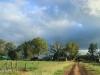 Bergville Dalmore farm north entrance driveway (1)