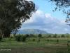 Bergville Dalmore farm views (1)