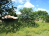 Ladysmith - Smiths Crossing - Free State HQ - 1900 -  - Farm House - outbuildings (1)