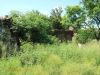 Ladysmith - Smiths Crossing - Free State HQ - Farm House - 28.29.51 S 29.42.55 E (48)