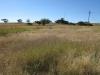 Rietfontein Farm - Boer Cemetery - S 28.28.49 E 29.49 (6)