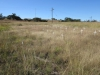 Rietfontein Farm - Boer Cemetery - S 28.28.49 E 29.49 (7)