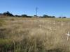 Rietfontein Farm - Boer Cemetery - S 28.28.49 E 29.49 (8)