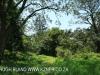 Byrne  - Forest Cliff Enon Estate (11)