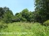 Byrne  - Forest Cliff Enon Estate (15)