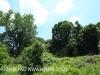 Byrne  - Forest Cliff Enon Estate (16)