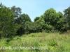 Byrne  - Forest Cliff Enon Estate (3)