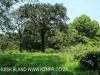 Byrne  - Forest Cliff Enon Estate (5)