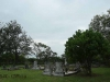 camperdown - Church of thr Resurrection - Graveyard overview (1)