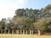 Lalampara - garden pergola (7).