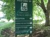 Caversham - Midlands Forest Lodge gardens (2)