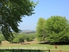 Riversfield Farm  outlook (1)