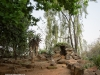 Citeaux Mission - grotto (3)