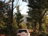 Clairvaux entrance drive