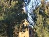 Clairvaux front facade (1)