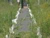 ambleside-milit-cemetary-entrance-gate-4