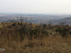 Colenso - Inniskilling Hill views towards Monte Cristo hill (2)