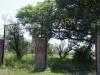 colenso-alexander-park-s-28-44-267-e-29-49-2