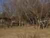 umsolusi-oxford-camp-on-bloukrans-river-chalets-6