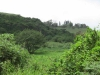 Blackburn Estates - Cornubia (1)
