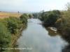 Aloe Train - Umzimkulu river
