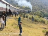 Aloe festival train pitstop (2)