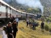 Aloe festival train pitstop (4)