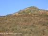 Aloes alongside the Paton Country Rail (11)...