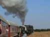 Paton Country Rail GMAM steaming along .(4)