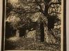 Newstead album stone gate