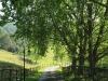 Newstead entrance driveway (1)
