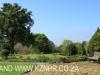 Newstead gardens (2)