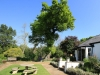 Newstead gardens (4)