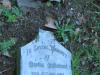 Currys-Post-St-Pauls-Church-grave-Martha-Mulhollanf-1884