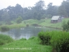 Aird farm cottages at dam (3)