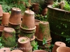 Dargle Valley Pottery (12)