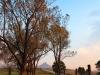 Beverley Nhlosane view (12)